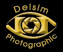 Delsim Logo (Gold)
